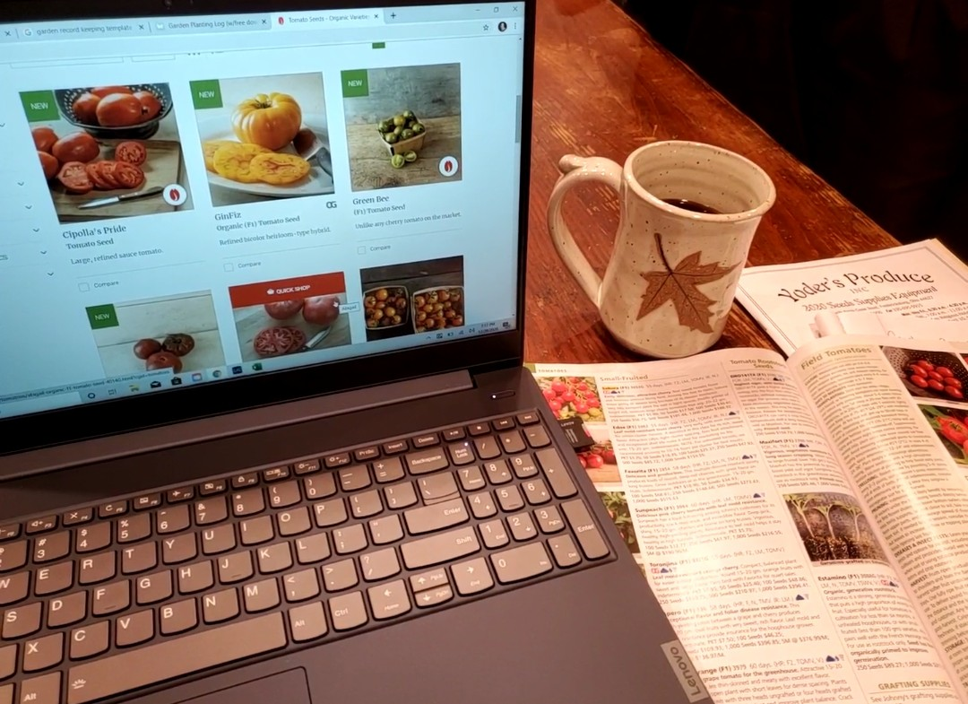 Seed Catalog, computer and coffee